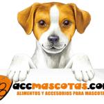 El blog de Mascotas. Alimentación y accesorios para mascotas