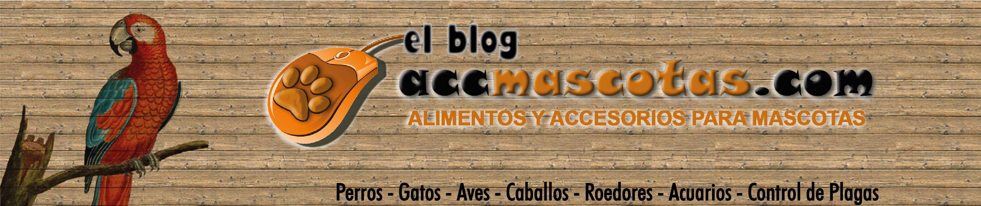 AccMascotas El Blog