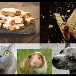 Alimentación para tus mascotas. ¿Es recomendable darle los restos de la cena de navidad a tus mascotas?