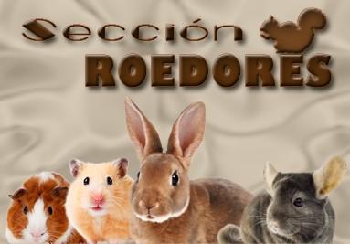 Sección roedores